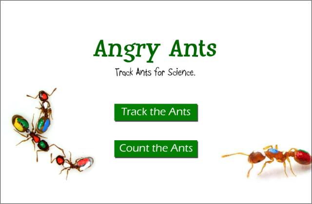 angryants